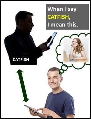 what does catfish mean